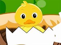 一只小鸭子