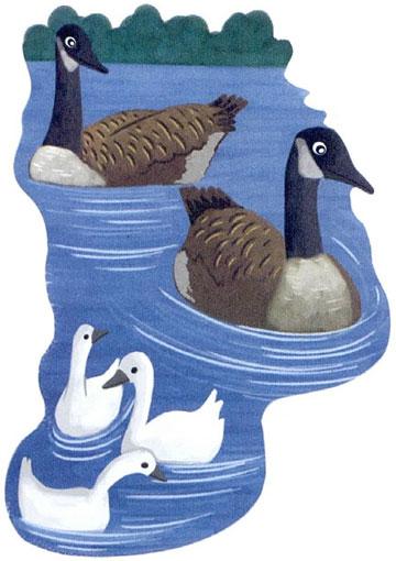 两只野鸭游过来了,靠近了小天鹅.-勇敢又优雅的天鹅图片